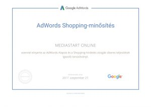 google-partners-certification-shopping-page-001
